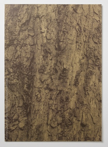 Reverse side of the poster, printed to look like bark.