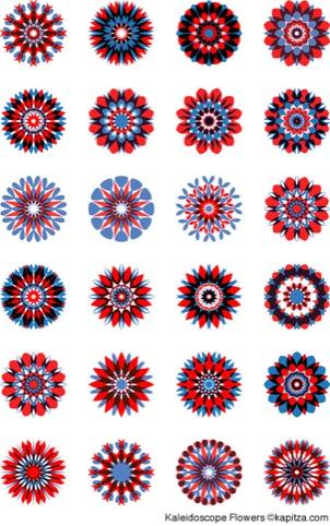 Kaptiza's Kaleidoscope Flowers