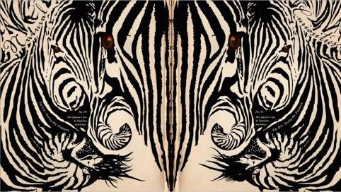 David Attenborough's Natural Curiosities, zebra