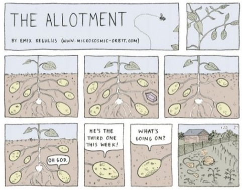 The Allotment, by Emix Regulus