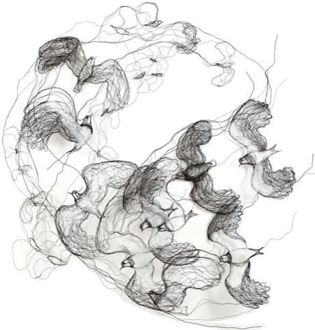 Birds by Celia Smith