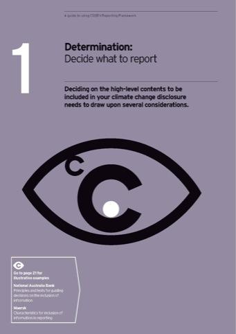 CDSB guide