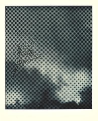 Smoke-Bouquet- Collotype/screenprint