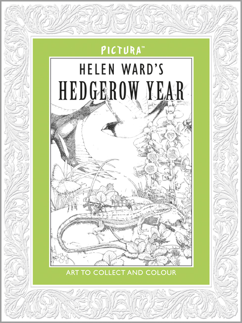 Helen Ward, Hedgerow Year