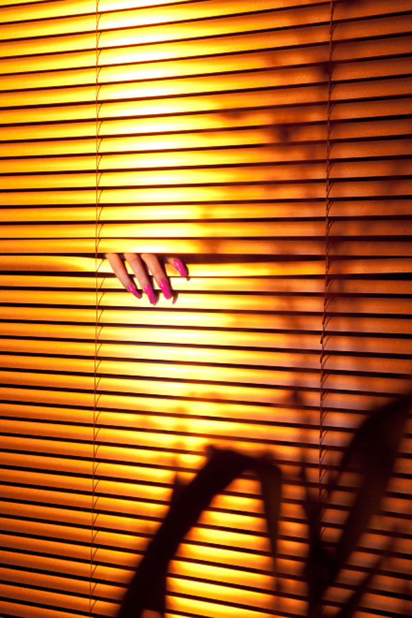 Blinds by Newshine