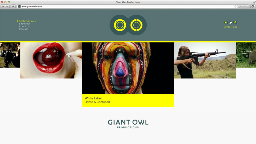 Giant Owl website