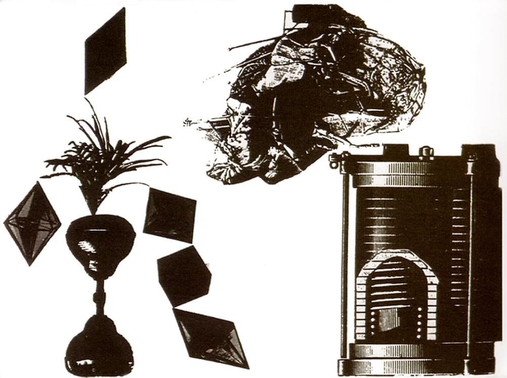 Walerian Borowczyk - New Horizons retrospective - Non restored images, Dom (House)