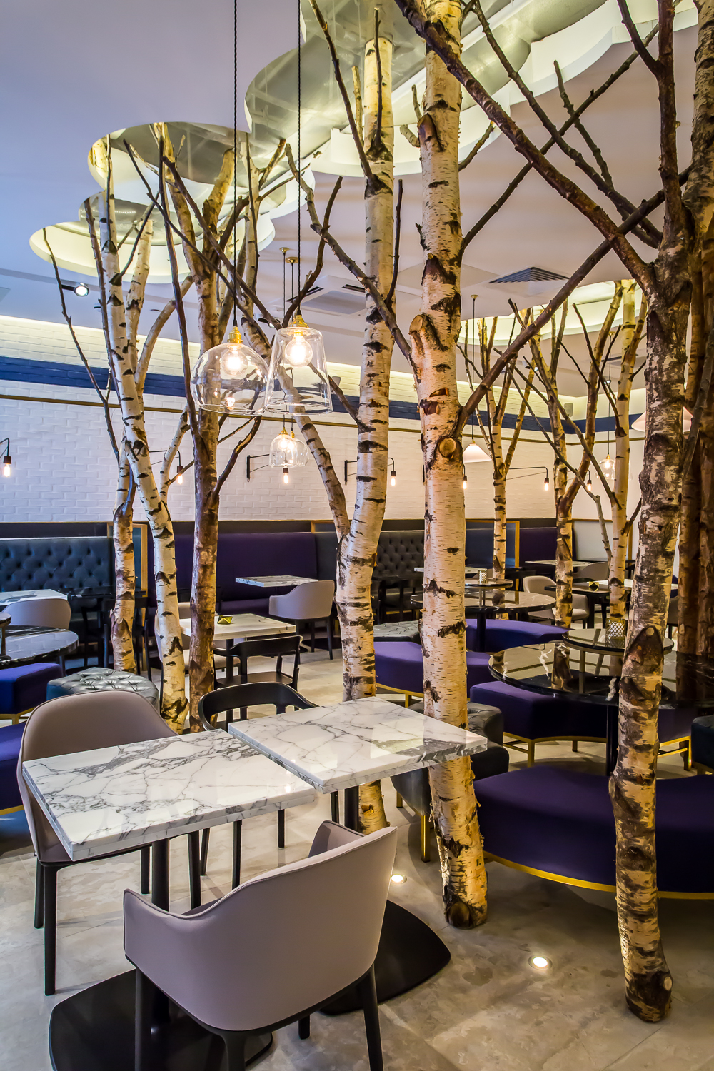 The birch trees inside Ethos