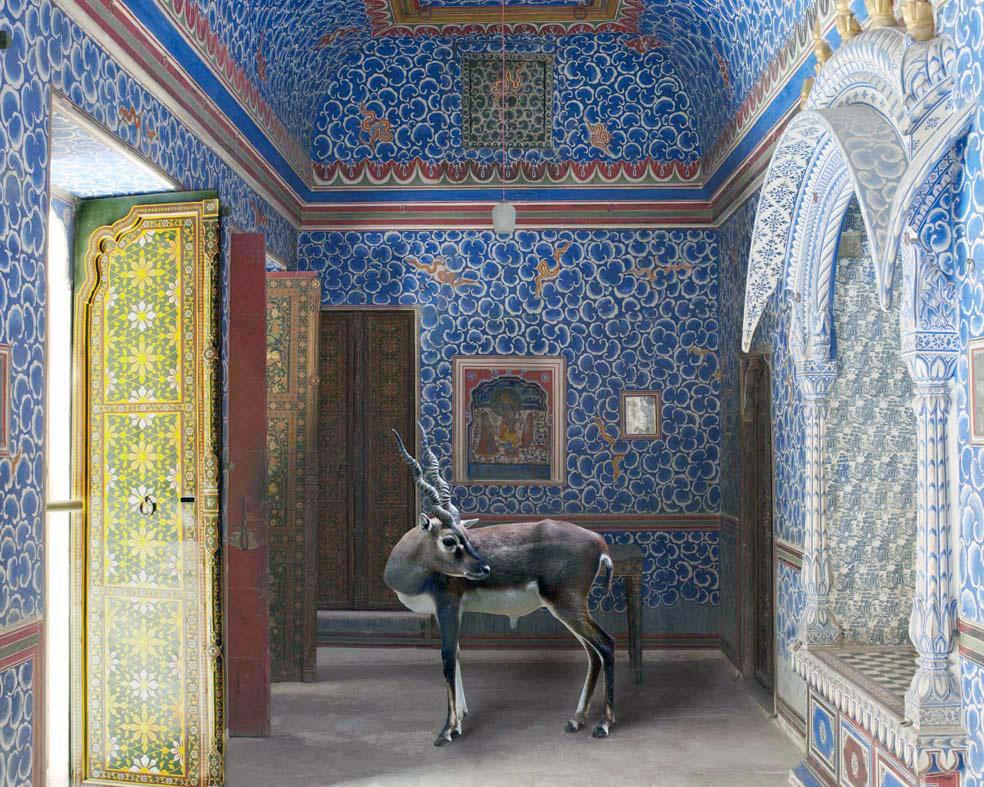 Galerie Les Filles du Calvaire, Karen Knorr, India Song series