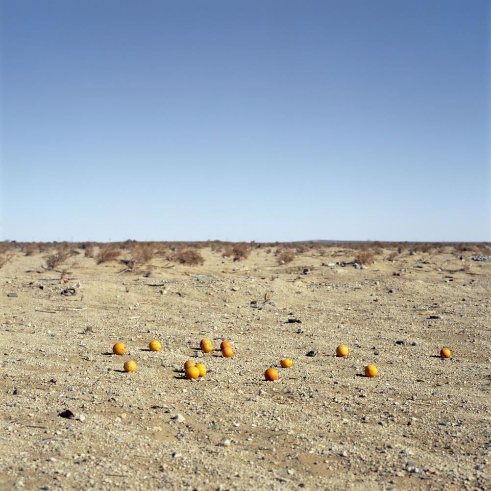 Anthony Hernandez - Discarded. © Thomas Zander - Cologne.