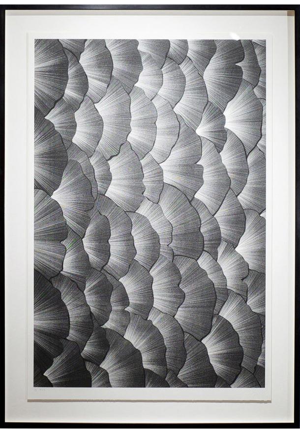 Light-Leaves-610-001