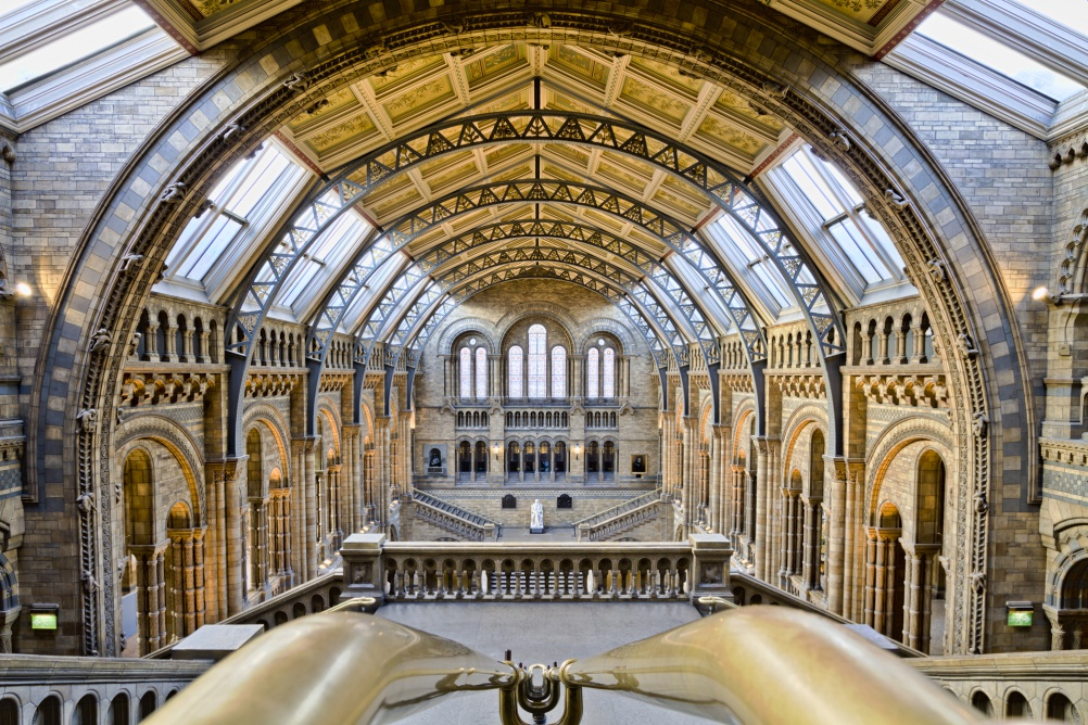 Natural History Museum. Image by flickr user Michael D Beckwith