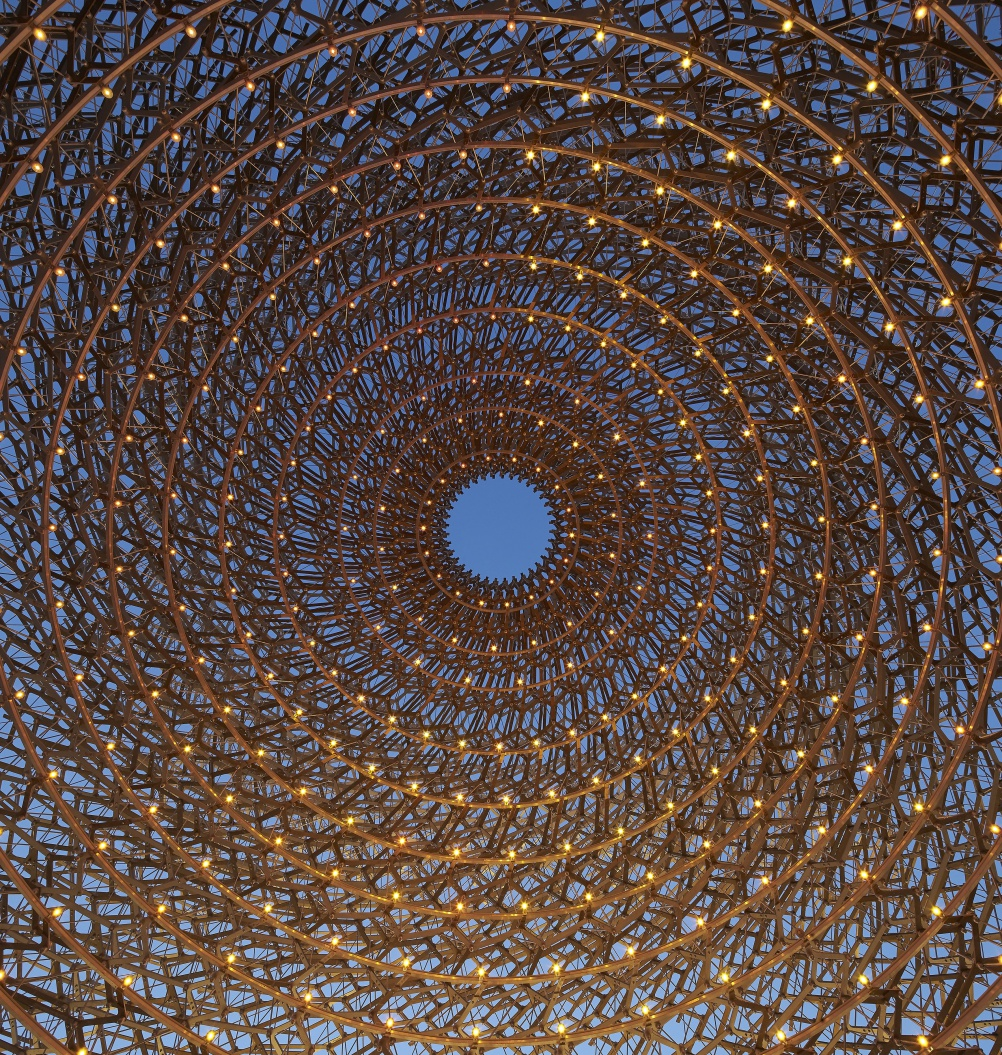 Inside the UK Pavilion Hive at night. © Crown Copyright. Photo: Hufton+Crow