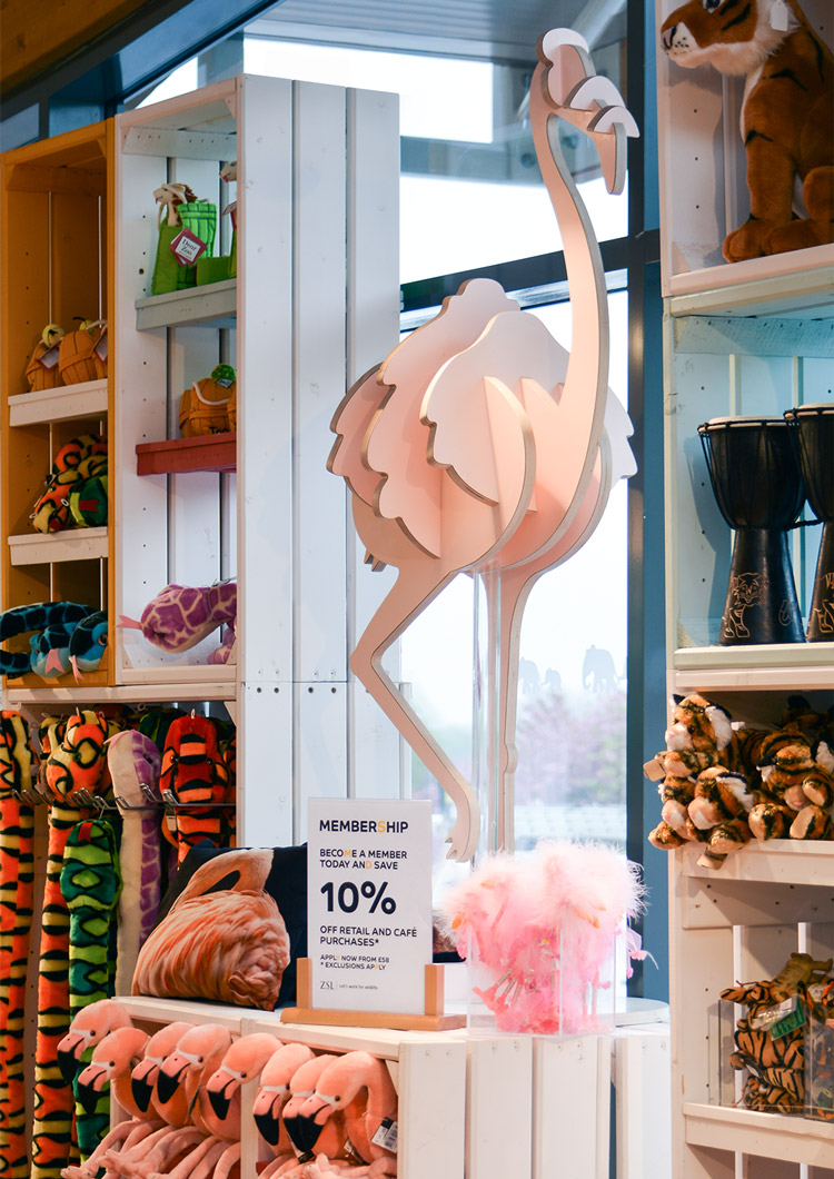 ZSL-Whipsnade-Flamingo-RGB