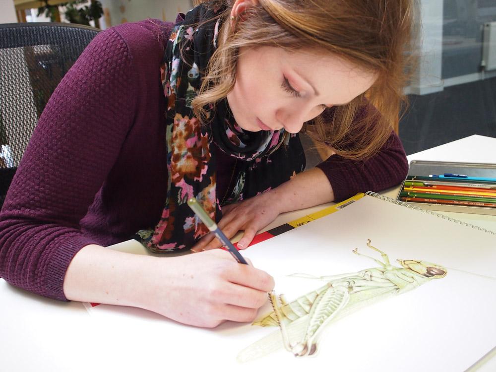 Cog Design digital project manager Becca Muir creating the Fed Up campaign illustration