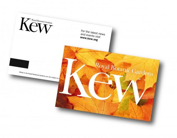 Kew_blog_7-620x485