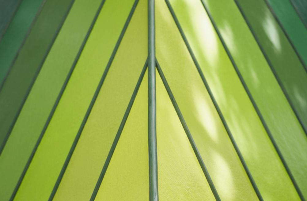 Noma Bar_BEV texture top leaf