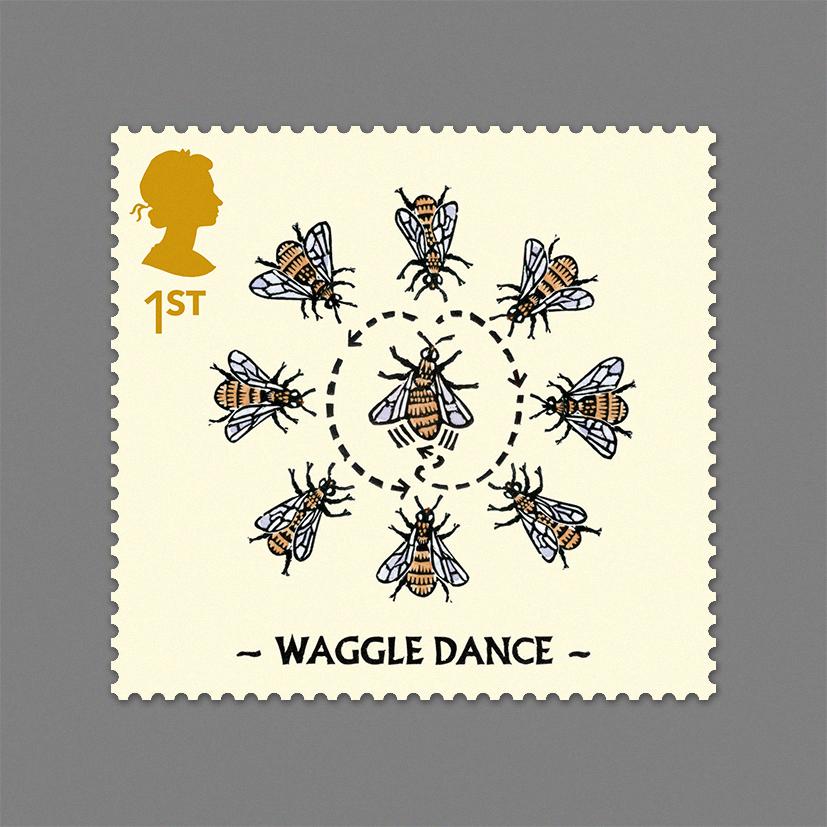 1 WaggleDance
