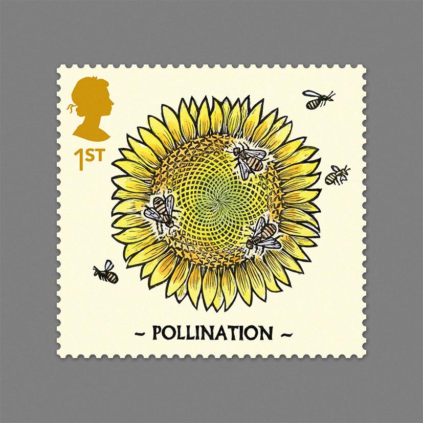 2 Pollination