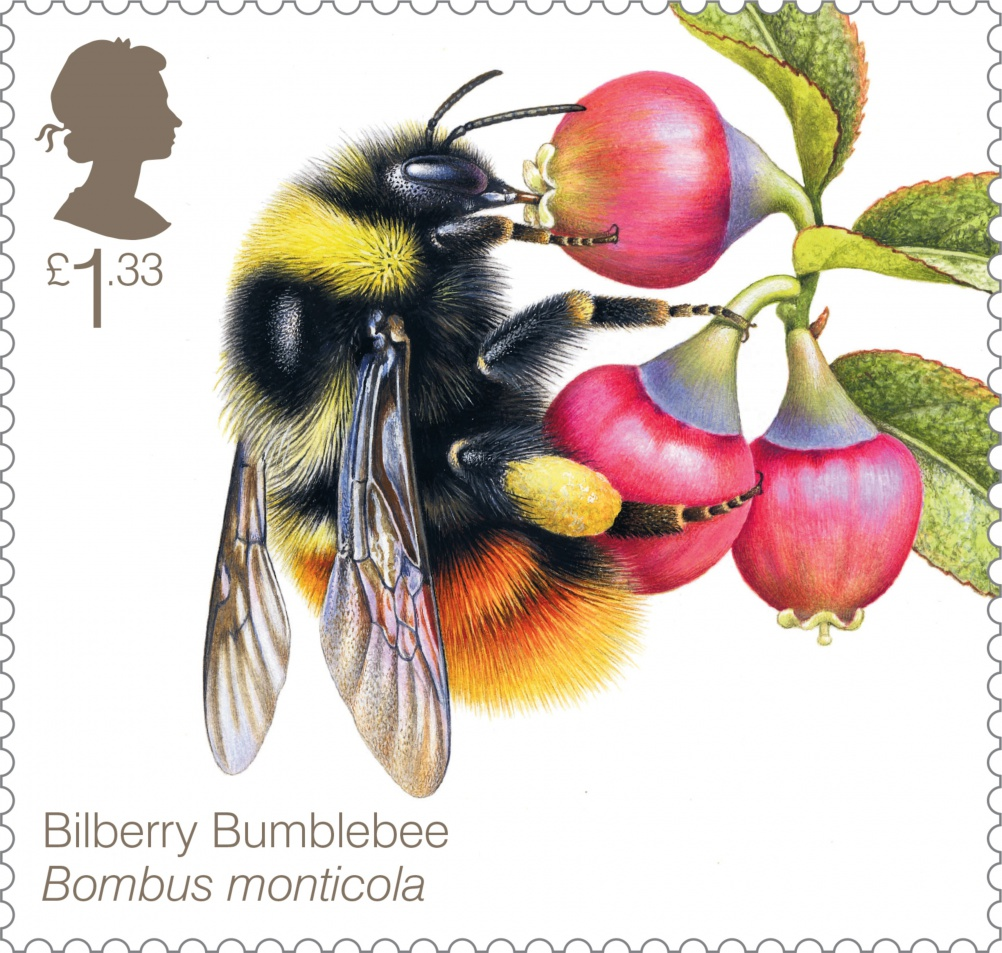 Bees Bilberry Bumblebee 400 Stamp