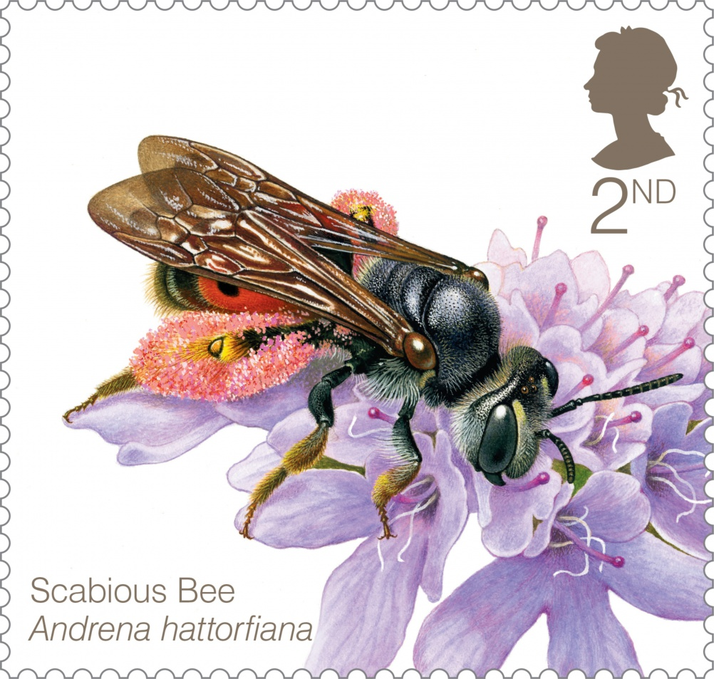 Bees Scabious Bee Stamp