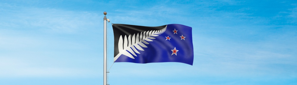 Silver Fern (Black, White and Blue), by architect Kyle Lockwood