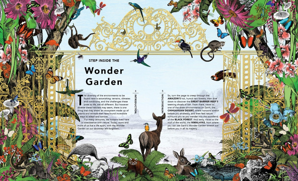 The Wonder Garden Illustrated By Kristjana Williams