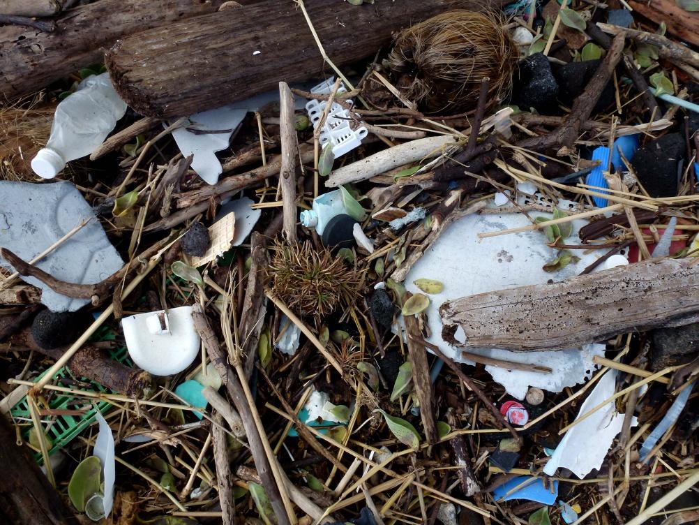 Debris on Plastic Beach