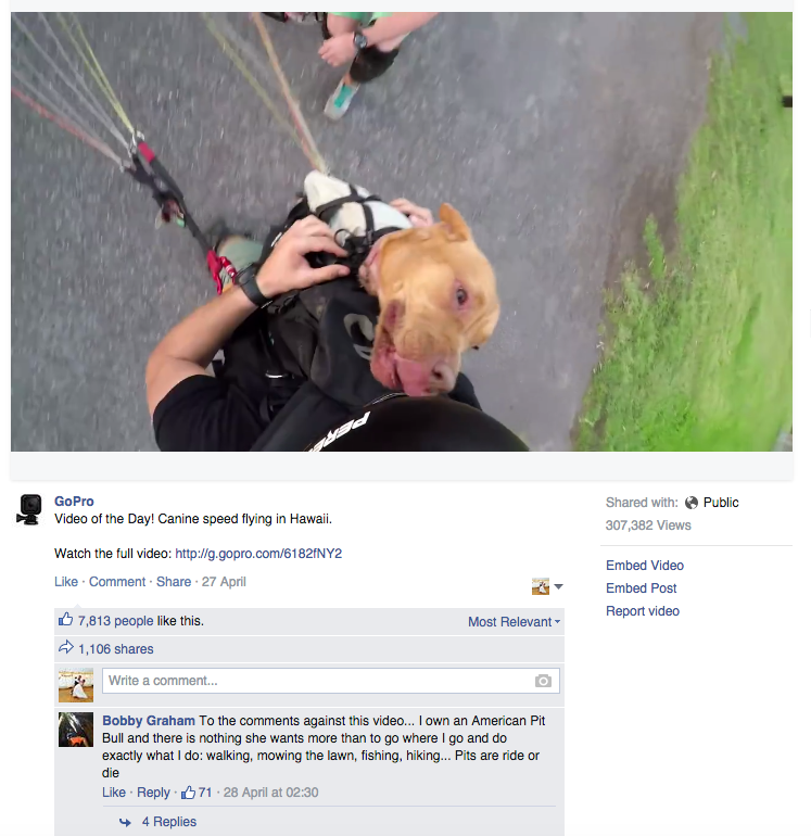 Facebook native video ad Go-Pro