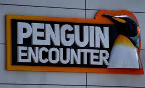penguin encounter