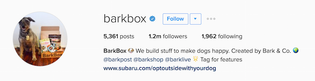 barkbox instagram