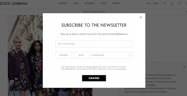 d&g newsletter light box