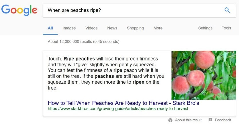 when are peaches ripe?