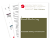 Cover for Email Marketing Briefing - November 2008