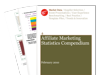 Cover for Affiliate Marketing Statistics