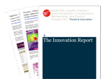 Cover for The Innovation Report