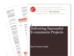 Cover for Delivering Successful E-commerce Projects