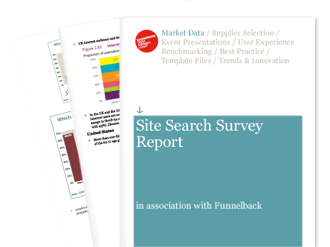 site-search-survey-report-2010.png