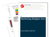 Cover for Marketing Budgets 2011