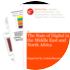 Cover for The State of Digital in the Middle East and North Africa 2011