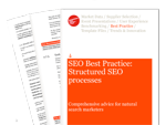 Cover for SEO Best Practice: Structured SEO Processes