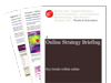Cover for Internet Marketing Strategy Briefing