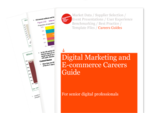 Cover for Digital Marketing and E-commerce Careers Guide: For Senior Digital Professionals