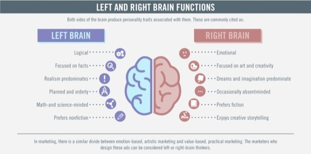 an overview of the right and left brain This is an interactive version of the open hemispheric brain dominance scale, a measure of left and right brain cognitive style.