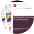 Cover for B2B Digital Marketing Trends Briefing: Key takeaways from Digital Cream London 2012