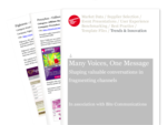 Cover for Many Voices, One Message (Online Communications)