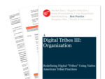 Cover for Digital Tribes III: Organization