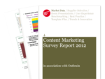 Cover for Content Marketing Survey Report