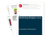 Cover for Marketing Budgets 2013