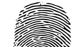 identity - fingerprint